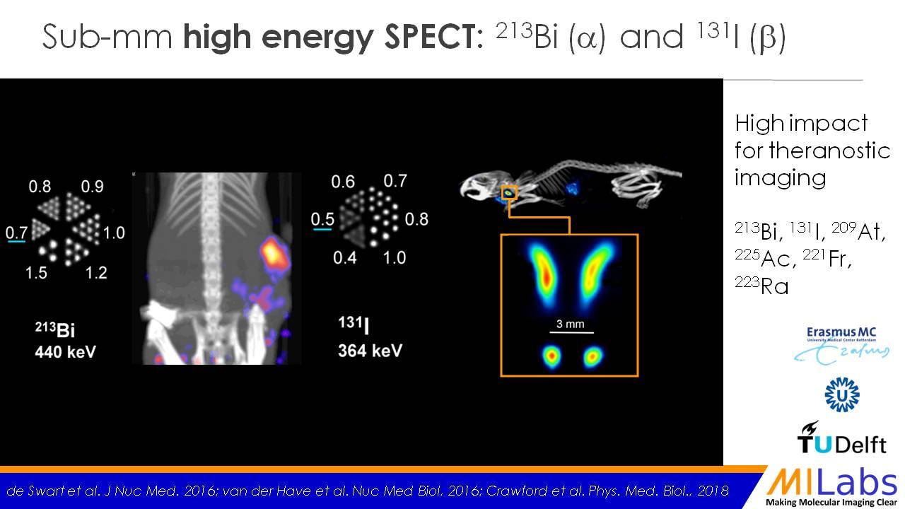 Sub-mm high energy SPECT 213Biand 131I 84