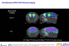 05800-Dual-Isotope-Brain-Mouse-MILabs-PET,SPECT,CT,OI