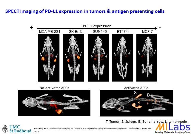 00800-Tumor-Oncology-MILabs-PET,SPECT,CT,OI