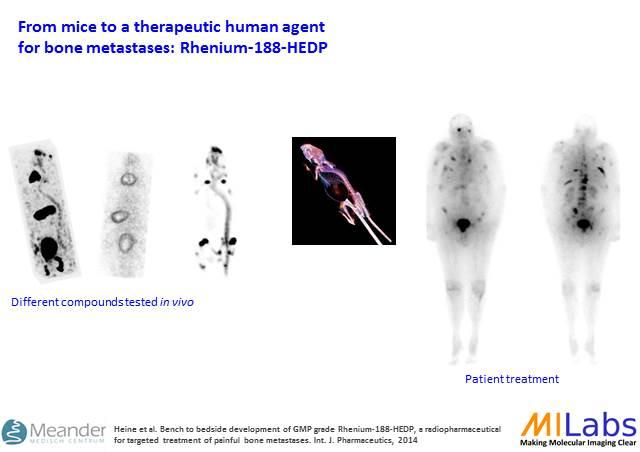02300-Translational-Re188-Bone-Tumor-MILabs-PET,SPECT,CT,OI