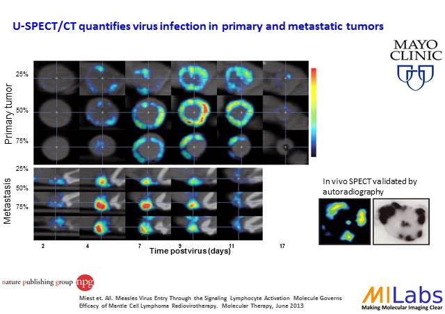 02900-Tumor-Longitudional-Therapy-MILabs-PET,SPECT,CT,OI