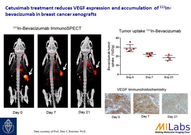 04800-Tumor-Treatment-VEGF-MILabs-PET,SPECT,CT,OI