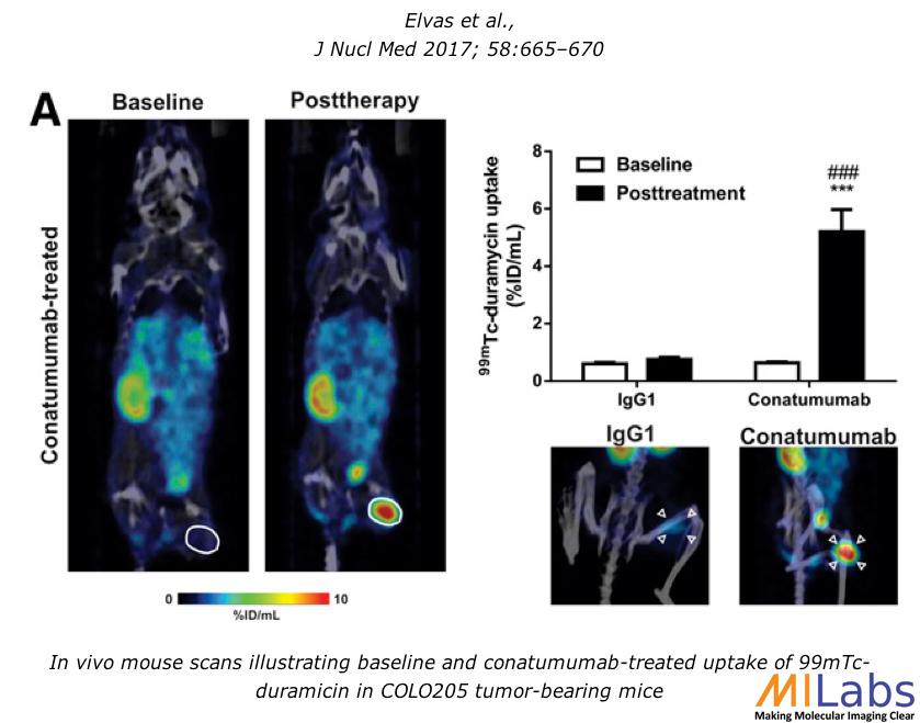 00050-99mTc_Early Tumor Response-MILabs-PET,SPECT,CT,OI
