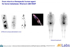 02300-Translational-Re188-Bone-Tumor-MILabs-PET,SPECT,CT,OI