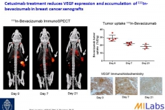 04800-Tumor-Treatment-VEGF-MILabs-PET,SPECT,CT,OI