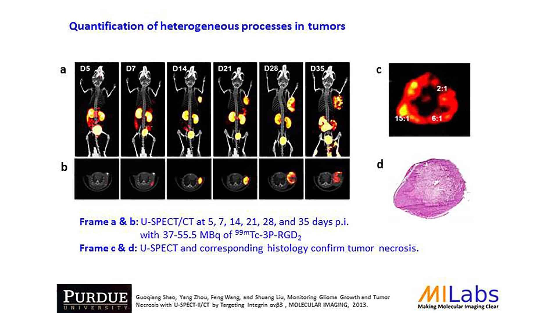 longitudional imaging of tumor treatment