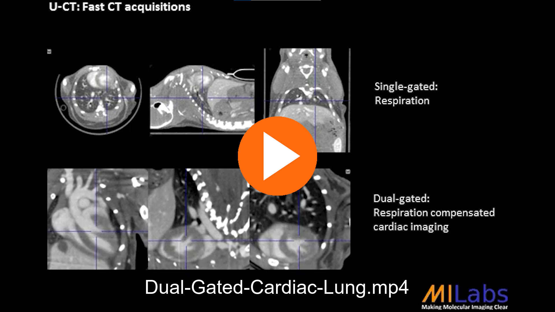 dual gated cardiac lung in mouse