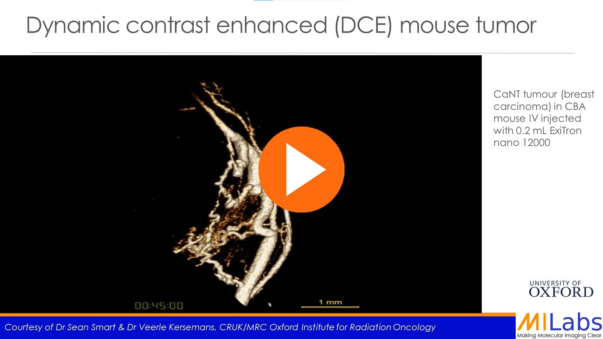 dynamic contrast enhance mouse tumor
