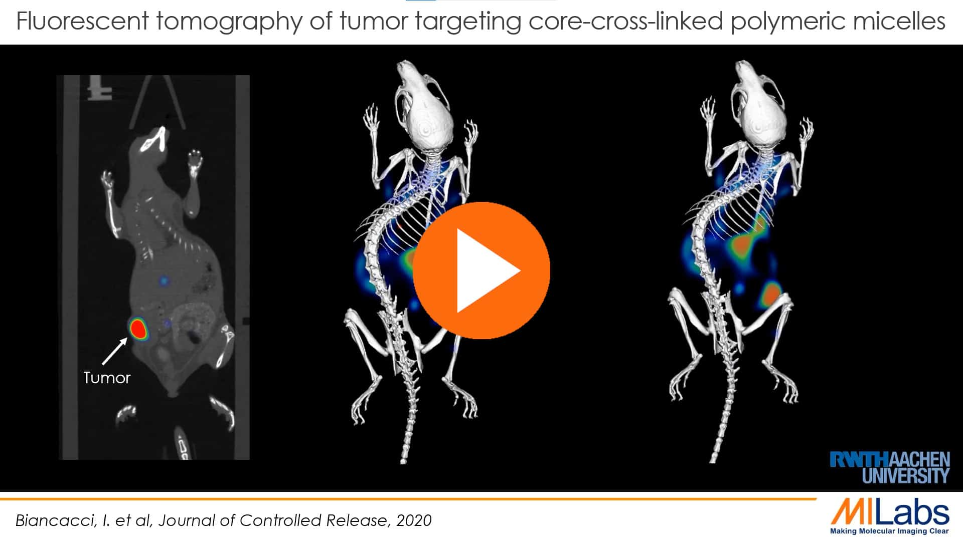 tumor targeting Optical imaging with fluorescent