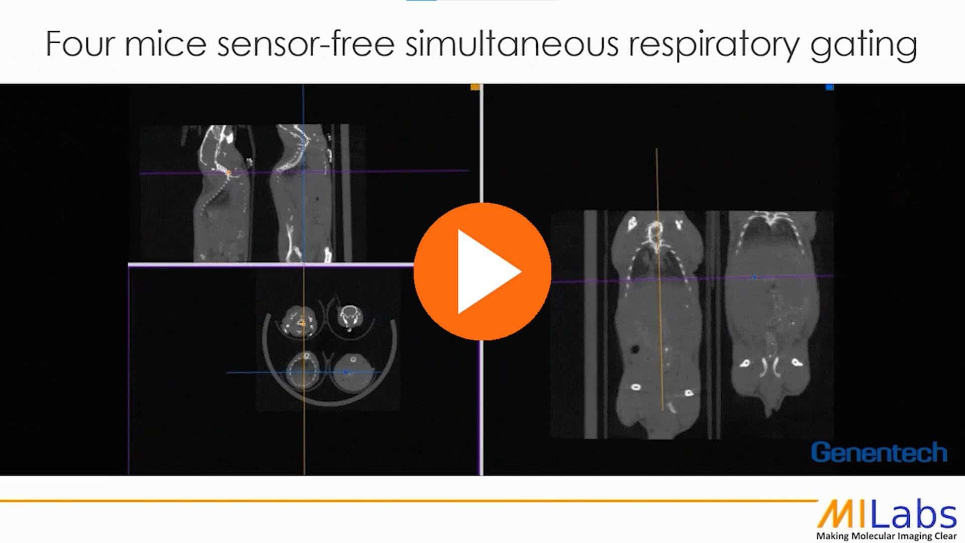four mice sensor free simultaneous respiratory gating