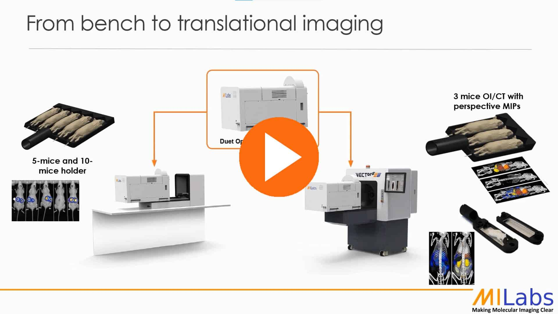 from bench to translational imaging