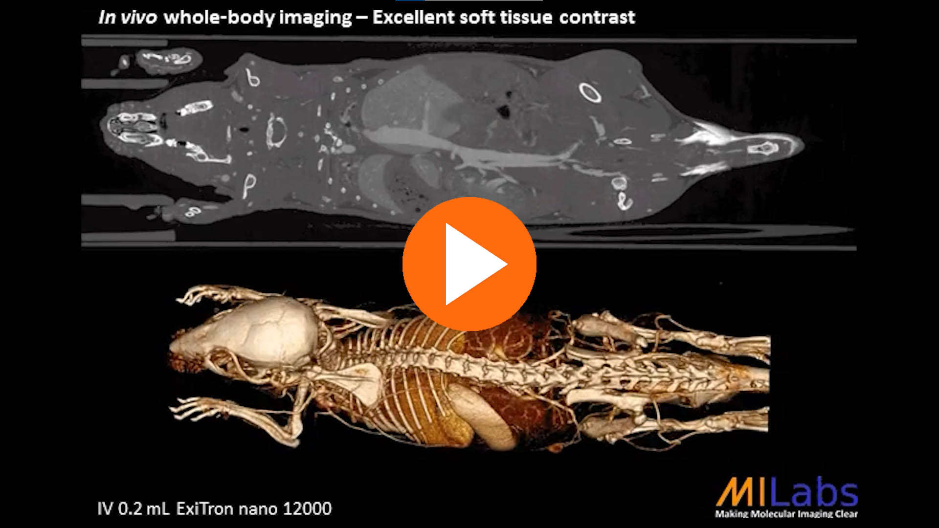 microCT in vivo whole body imaging excellent tissue contrast