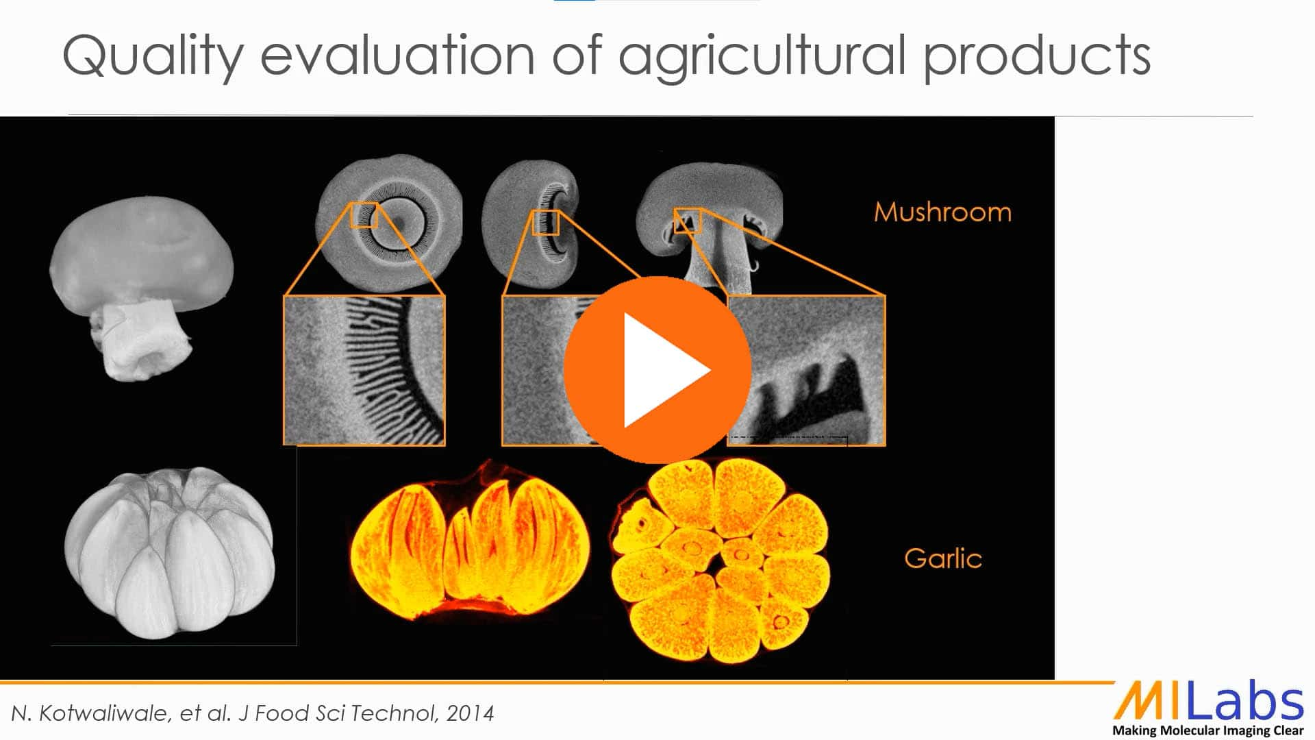NDT quality evaluation of agricultural products