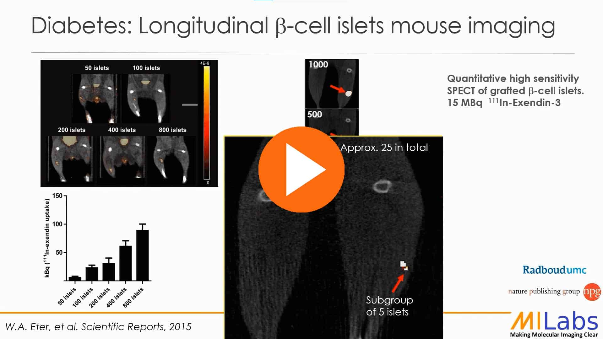 mouse imaging diabetes micro-SPECT