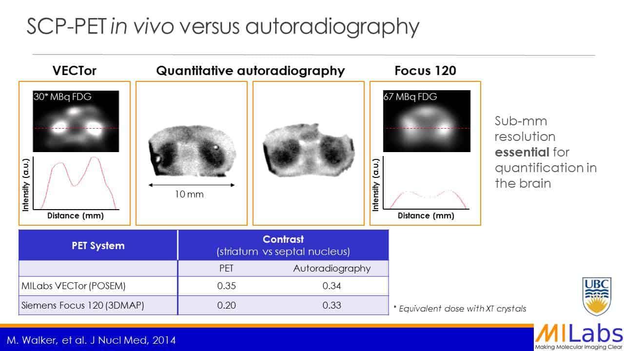 PET in vivo versus autoradiography