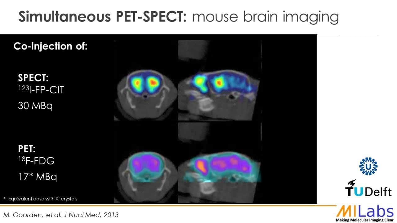 simultaneous PET SPECT mouse brain imaging in vivo
